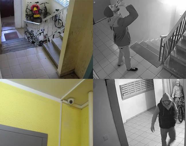 kameri-v-podezde-onlayn-chastnie-foto-nebritih-zhenshin